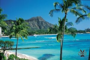 Waikiki Beach, Hawaii (© Norwegian Cruise Line)